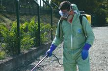 Bayer launches glyphosate information hub for the amenity sector