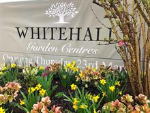 Whitehall Garden Centres sees growth
