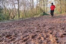 National Trust tackling mud baths and erosion due to increased footfall