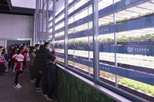Taiwanese company plans £18m vertical farming facility in the UK