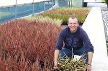 Seiont Nurseries increases home production