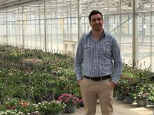 New biostimulant helps young plants overcome transplanting stress