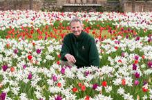 Arundel Castle's blooms enjoyed virtually