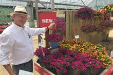Ball Colegrave Summer Showcase includes 436 new bedding and perennial varieties – PICTURE GALLERY