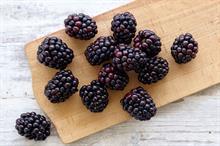Blackberry sales up 8% says British Summer Fruits