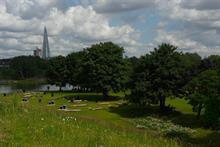 Health the focus of Parks for London 2019 report