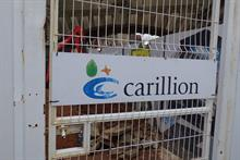 What can landscapers expect in the aftermath of Carillion's collapse?
