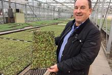 Earley Ornamentals says growers are looking for a UK supply chain post-Brexit