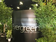 Evergreen Exterior Services sees sales uplift