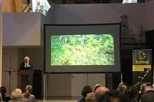 Metropolitan Public Gardens Association launches elm scheme