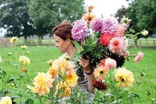 Research reveals lower carbon footprint of British cut flowers