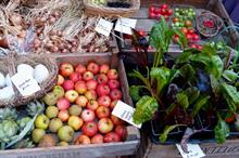 """Store layout can """"nudge"""" young people to buy more fruit and veg, researchers find"""