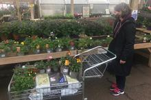 Pandemic turnover impact on 20 top garden centres, suppliers and growers revealed