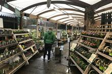 Horticulture Week exclusive monthly Epos garden centre sales data