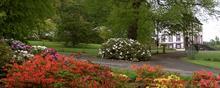 Glendoick Gardens celebrates centenary with new cultivars