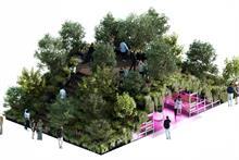 Planting trends for Chelsea Flower Show revealed