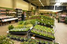 Garden Centre Fresh sells up to Dutch company EDD Group