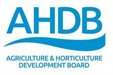 """AHDB to publish review in """"very near future"""""""