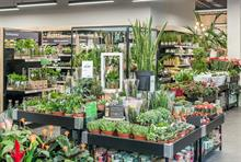 Big three garden centre chains - updates with 200 centres and £1bn turnover on the horizon