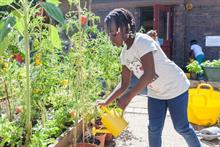 National Lottery Community Fund celebrates £270m funding as National Allotment Week takes place