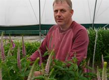 National Cut Flower Centre to take part in crop protection research