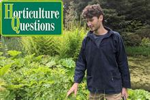 Six questions with garden designer Maxwell Parker Smith