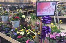 Garden centres and growers prepare for Mothering Sunday sales peak