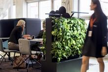 Finnish company launches low-rise, indoor green wall product
