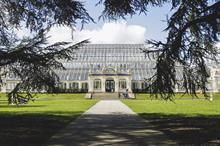 Kew launches summer well-being programme