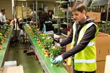 Horticulture industry could be worth 50% more if skills gap is filled