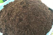 Bord na Móna  ends peat harvesting