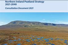 Peat strategy 2021-40 launched