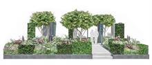 Perennial collaborative horticulture industry garden finds success at Chelsea Flower Show