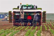 What do the latest developments on migration and trade mean for growers?