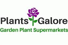 Plants Galore threatened with High Court action in coronavirus garden centre opening dispute