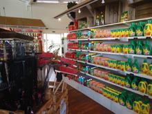 January retail sales strengthen
