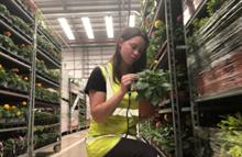Animal and Plant Health Agency recruits 100 for Plant Health and Seed Inspectorate