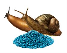 Doff introduces ferric phosphate slug killer after metaldehyde phase-out