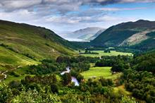 Shell gives £5m for tree planting and restoration in Scotland