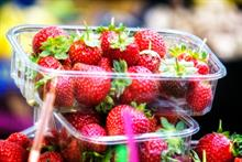Berries continue to increase share of fresh fruit market