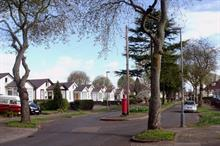 What impact will planned new tree duties for local authorities have in practice?