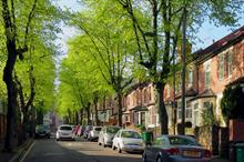 How can tree managers use latest official guidance to protect and enhance urban tree stocks?