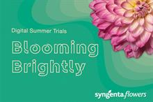 Syngenta Flowers to promote Petunia Fun House at virtual trials