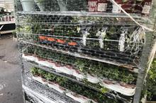 Defra defends plant import fees hike