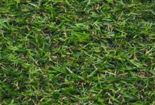 Artificial turf group adds 50% more members in a month reflecting growth of sector