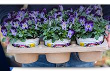 Desch Plantpak Presents Colour Your Story, autumn/winter 2021-2022