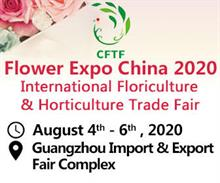 Chinese gardening expos go ahead in August
