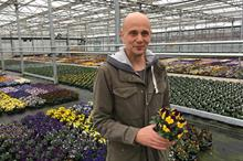How WD Smith & Son uses its pansy and viola festival to boost sales