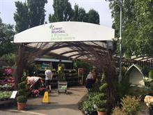 Wyevale Garden Centres 'could go to a single buyer' but some are unlikely to be sold