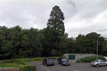 Developer fined £300,000 for felling trees